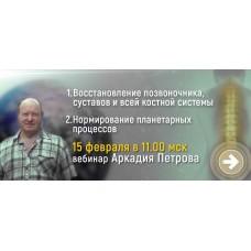 Восстановление позвоночника, суставов и всей костной системы. Нормирование планетарных процессов, запись вебинара Аркадия Петрова от 15 февраля 2020 года